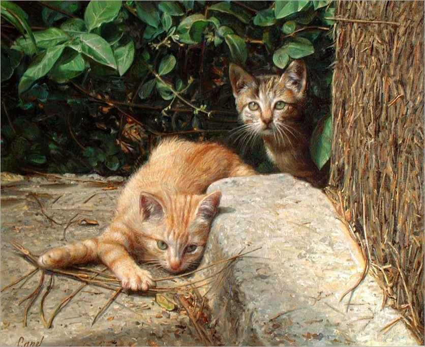 gatitos 2-AntonioCapel