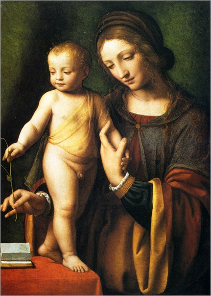 BernardinoLuini(1480-1532)the_virgin_and_child_with_a_columbine