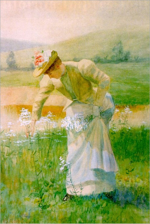 scott-evans-1847-1898