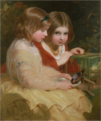 james-sant--the-pet-bullfinch
