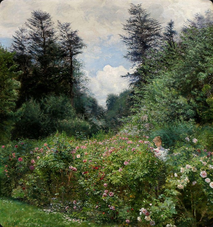 flowering roses_Peter Tom-Petersen