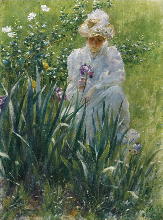 the iris_ Charles Courtney Curran
