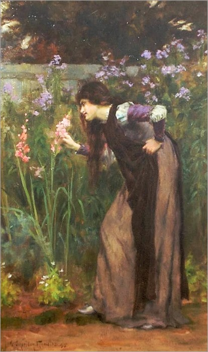 gladiolas by George Sheridan Knowles ( British, 1863-1931)